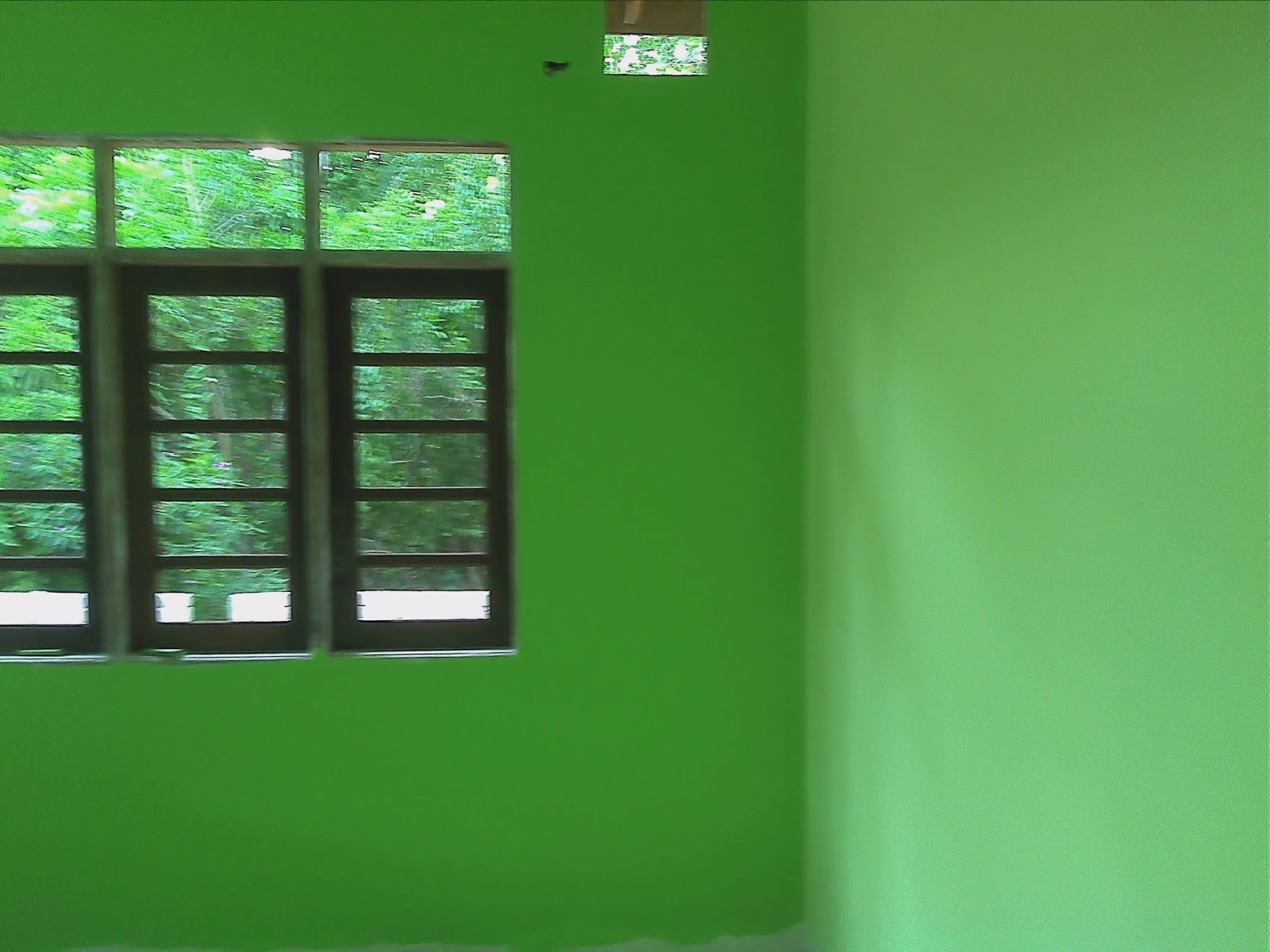 rumah warna hijau muda submited images