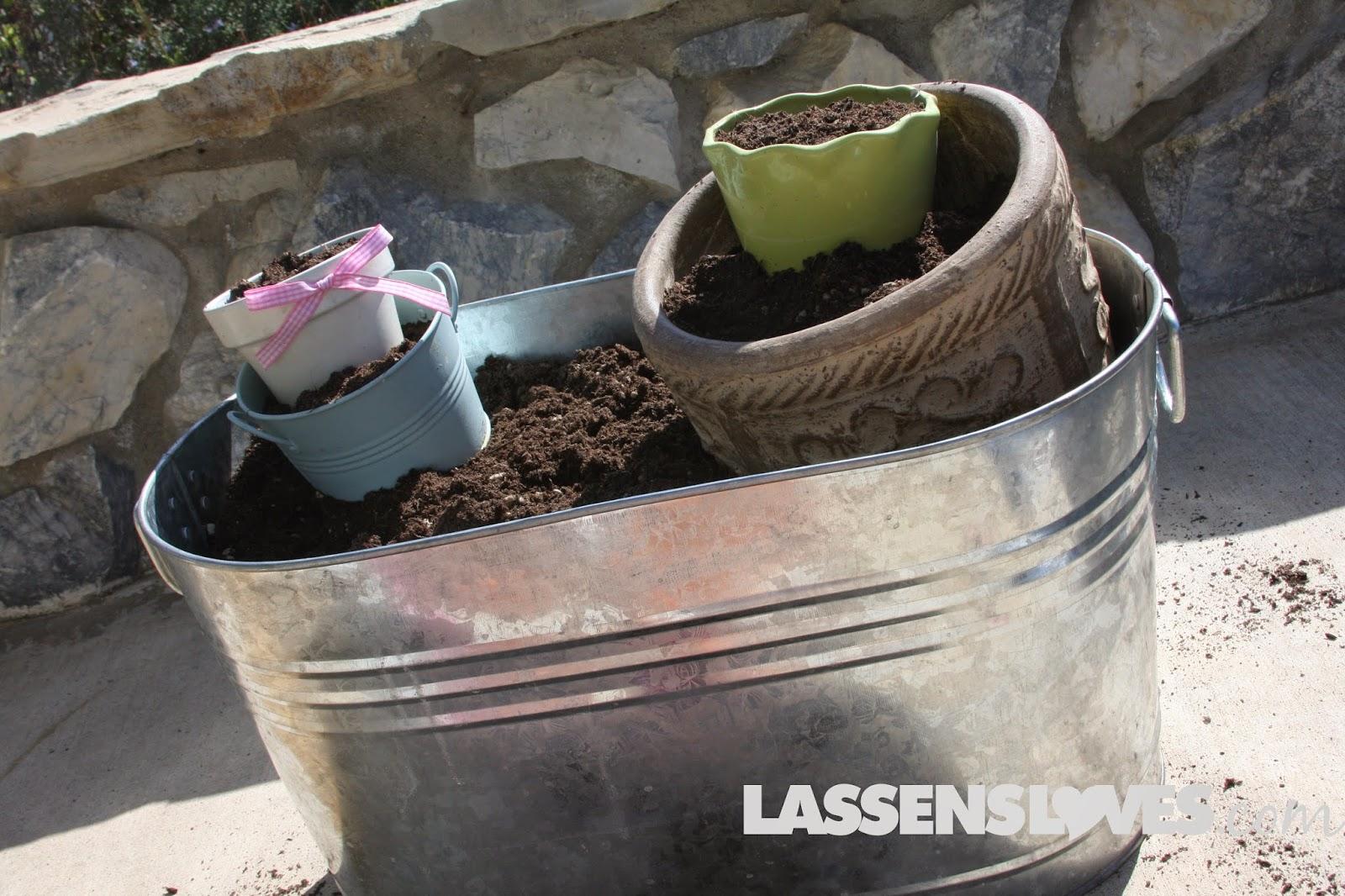 container+gardening, organic+gardening