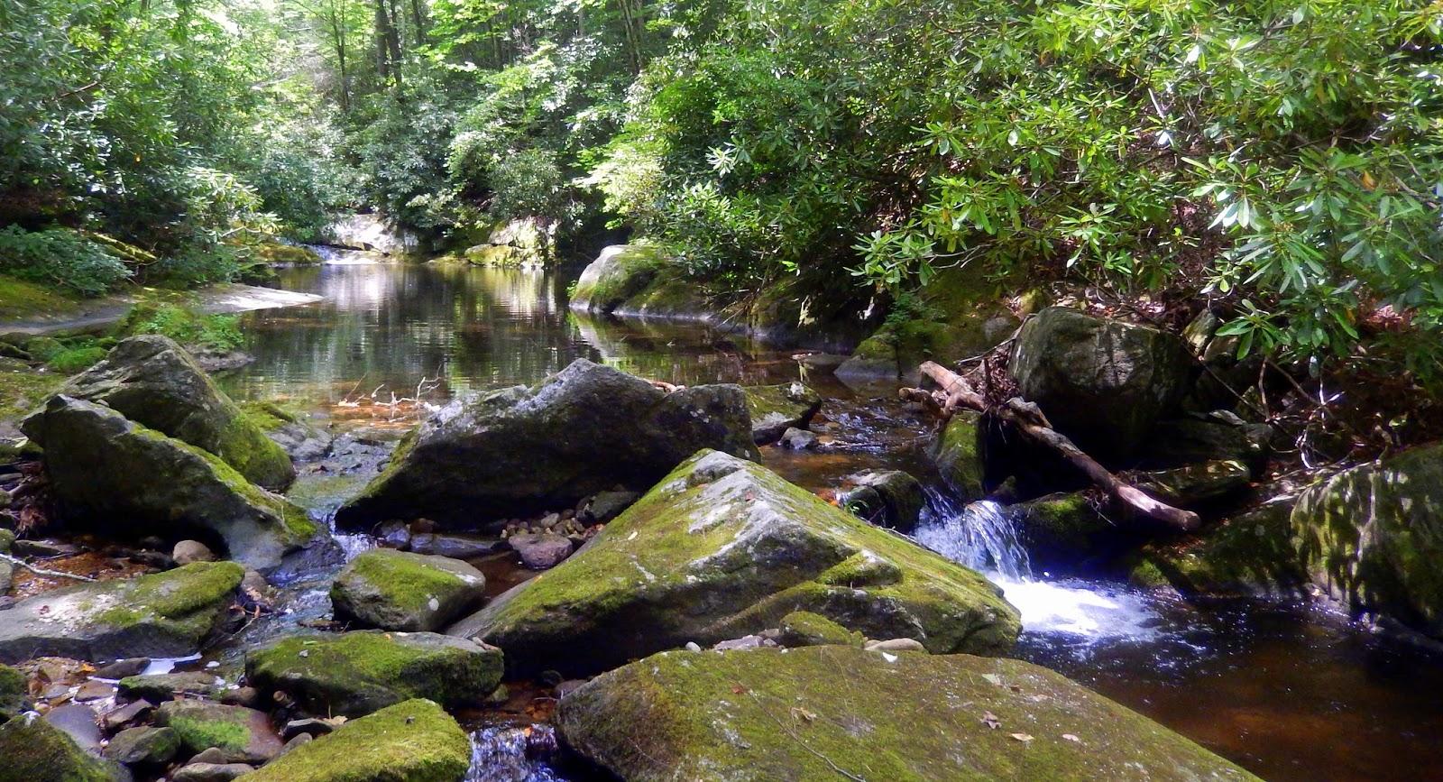 wilson creek guys Wilson creek nc 4092017  snorkeling thorps creek - wilson creek in the pisgah national forest - duration:  the high guys s1 • e14 high vs.