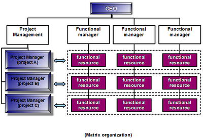 a description of matrix organization in authority divided both vertically and horizontally