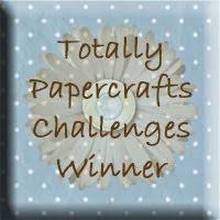 Challenge Winner Banner