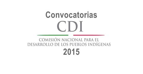 Proyectos productivos CDI 2015