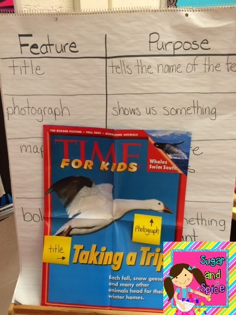 Learning About Nonfiction Text Features Part 1 Ideas A Freebie