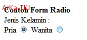 Contoh Form Type Radio di HTML