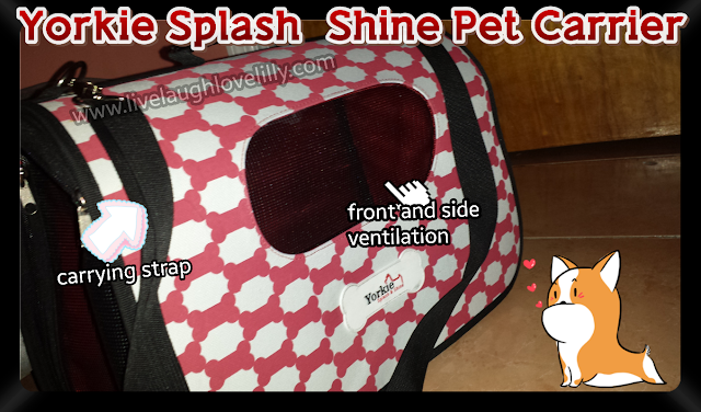 Pet carrier review, YSS Special Yorkie carrier