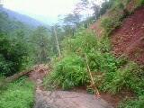 Bencana Tanah Longsor Desa Gunungwuled - Purbalingga
