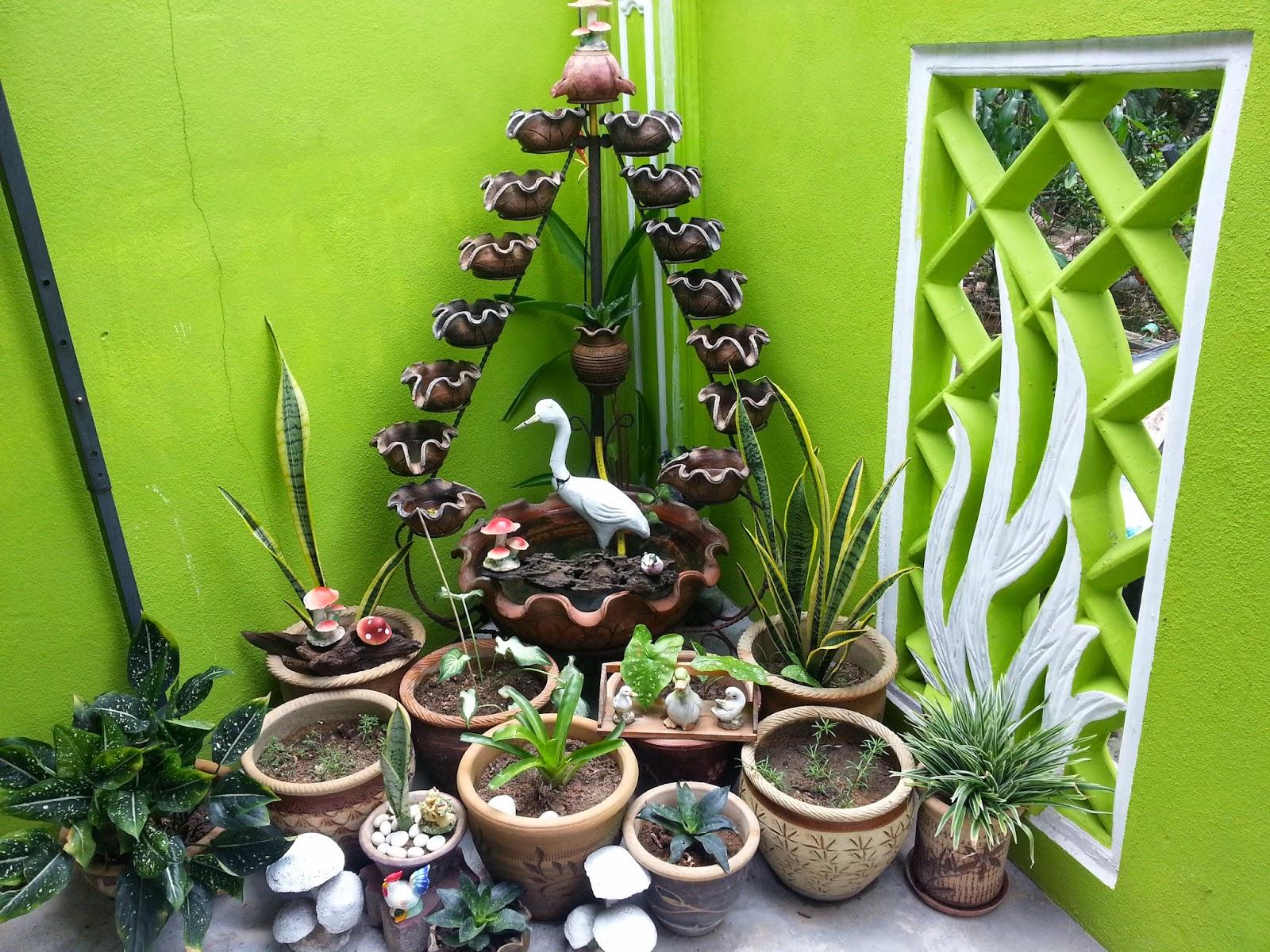 mini garden, kolam kecil, de perahu cafe, tanaman hiasan, tanaman dikolam,