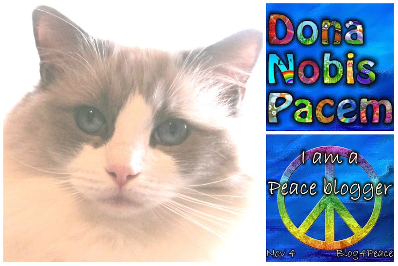 BLOGGING FOR PEACE NOVEMBER 4TH...THANKS FOR VISITING!