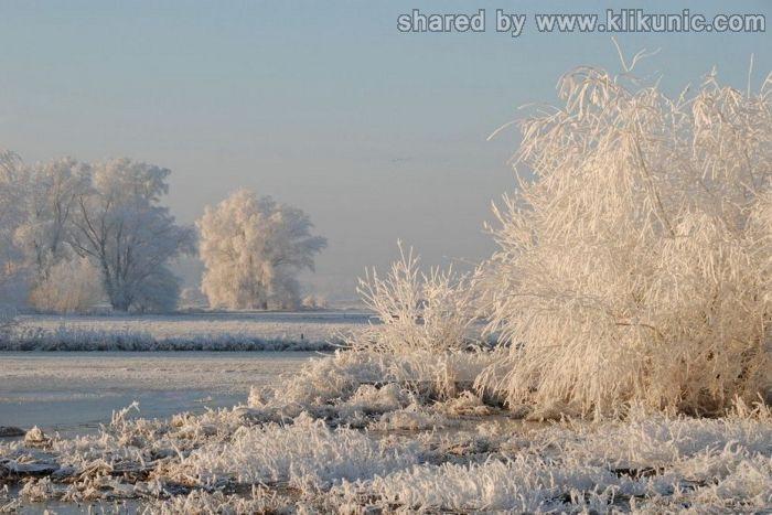 http://3.bp.blogspot.com/-Y98ipE2kQBw/TXNbrgFvZMI/AAAAAAAAP-M/TNliVSVegFQ/s1600/winter_16.jpg