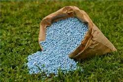 El mantenimiento se aplica abono y fertilizantes