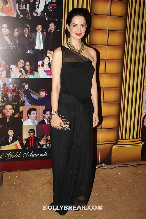 , Star Gold Television Awards 2012 Pics