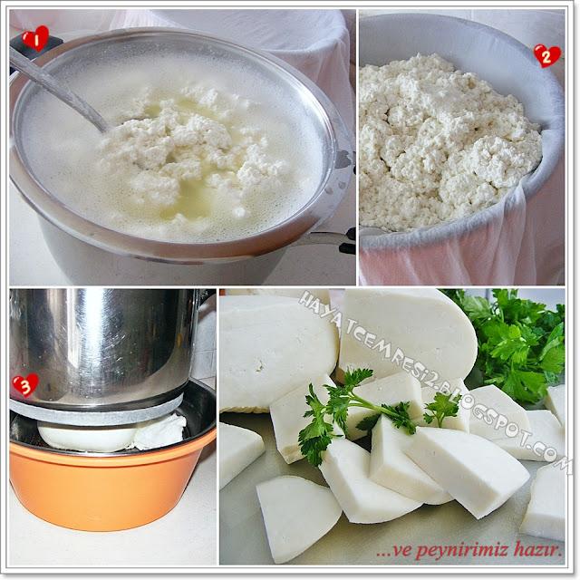 Hayatcemresi: Peynir Mayasi Kullanmadan Evde