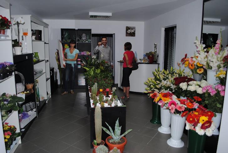 Floraria Flori's Deco