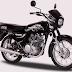 Kawasaki Barako II, 175 CC Motorcycle