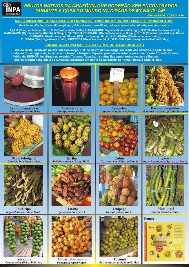 Frutos da Amazônia que poderão ser encontrados durante a copa do mundo em Manaus, AM.