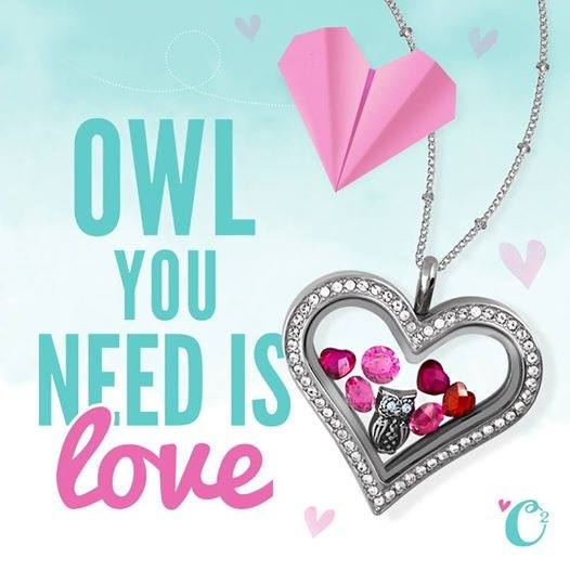 origami owl heart locket and charms origami owl at