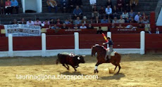 OVIEDO toros  2005