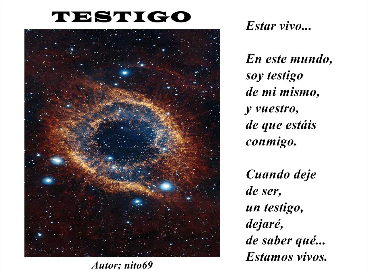 TESTIGO