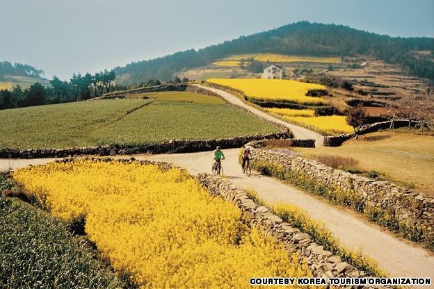 Cheongsando (청산도)