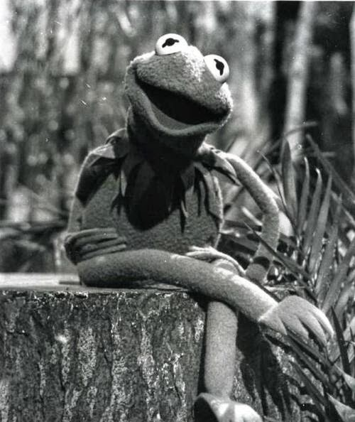 black singles in kermit Find and save ideas about kermit on pinterest | see more ideas about kermit the frog, reaction pics and kermit the frog meme.