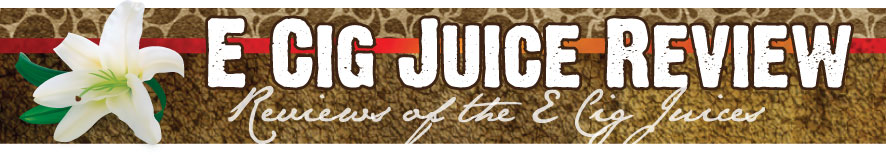 E Cig Juice Review