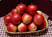 من قواعد الإيتيكيت: تجفيف الفواكه قبل تقديمها علي المائدة
