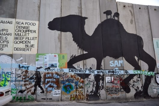 west bank graffiti, camel, vandalism, ancient graffiti