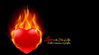 Fire Love HD 11
