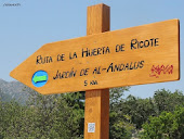 RUTA DE LA HUERTA DE RICOTE / Walk through the Market Garden of Ricote: