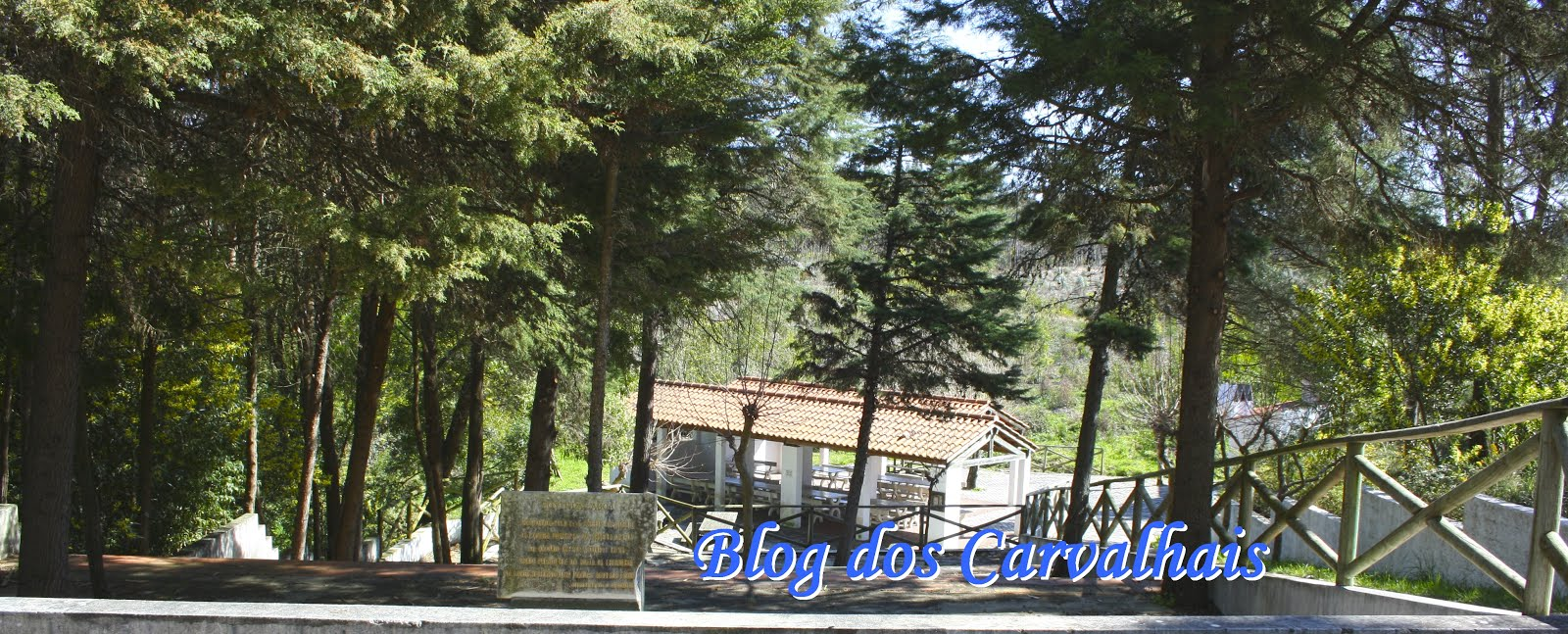 Blog dos Carvalhais