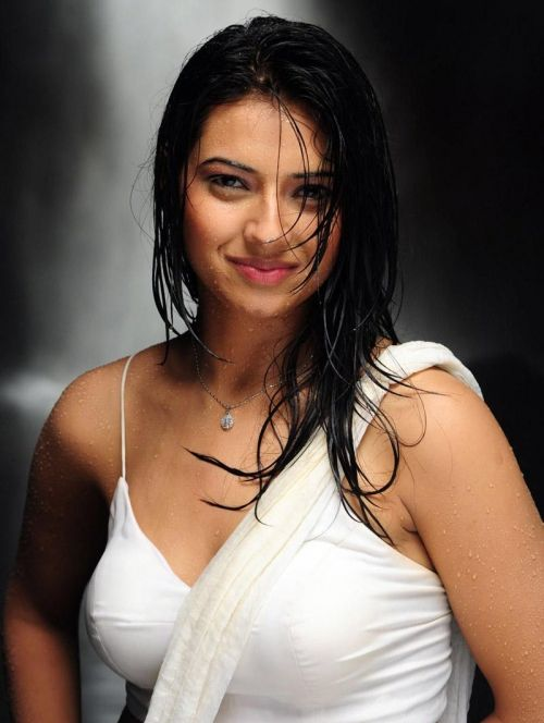 Isha Chawla Hot Saree Photo Stills