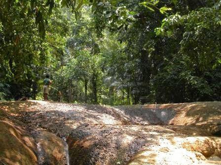 Taman Nasional Ujung Kulon