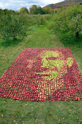 Steve Jobs Portrait made out of 3,500 Apples  Seen On www.coolpicturegallery.us