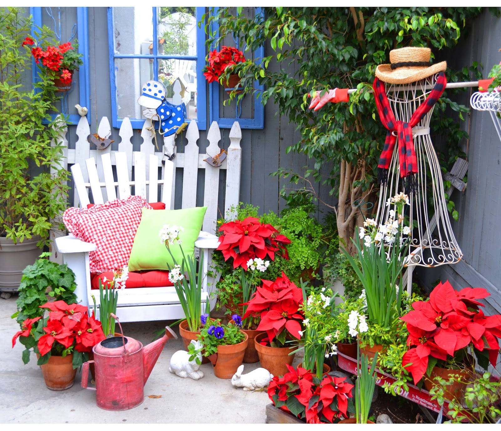 my painted garden january 2015
