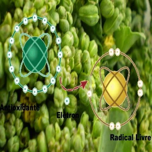 Neutralização dos radicais livres pelos alimentos com propriedades antioxidantes. Veja dica de cardápio antioxidante