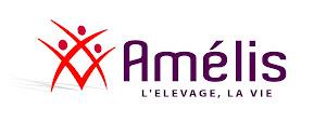 Notre partenaire Amélis