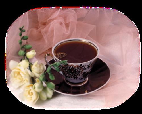Résultat d'images pour tube café