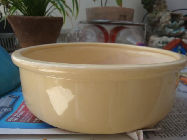mini jardins em vaso:Este vaso é em cerâmica esmaltada, achei um pouco caro, mas fiz para