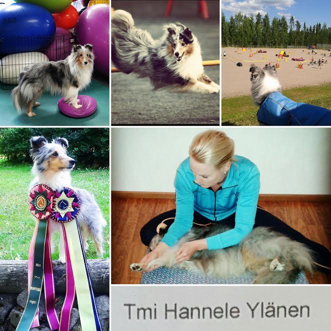 Tmi Hannele Ylänen