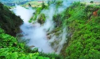 Tanah Dipengaruhi Garam Bisa Serap Karbon Dioksida