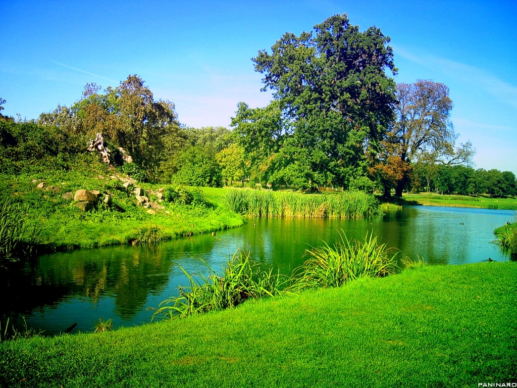 green nature background hd - photo #13