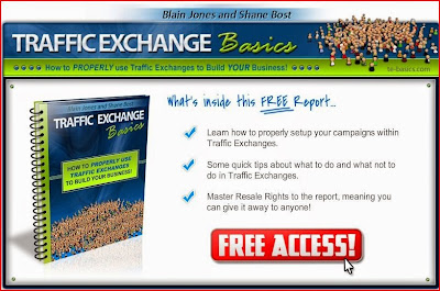 Traffic Exchange Basics