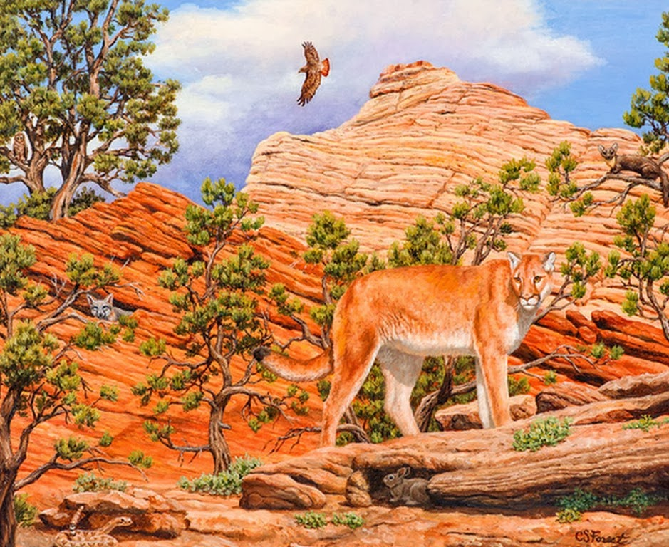 paisajes-con-animales-salvajes