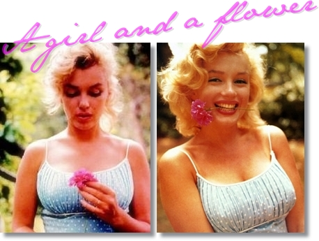 marilyn monroe, marilyn monroe flower, marilyn monroe blomma, flower girl marilyn monroe, blomsterflicka marilyn monroe