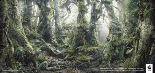 00-Anaïs-Boileau-WWF-Marcel-Hidden-Animals-in-the-Rainforest-www-designstack-co