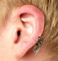Tener la mosca detras de la oreja
