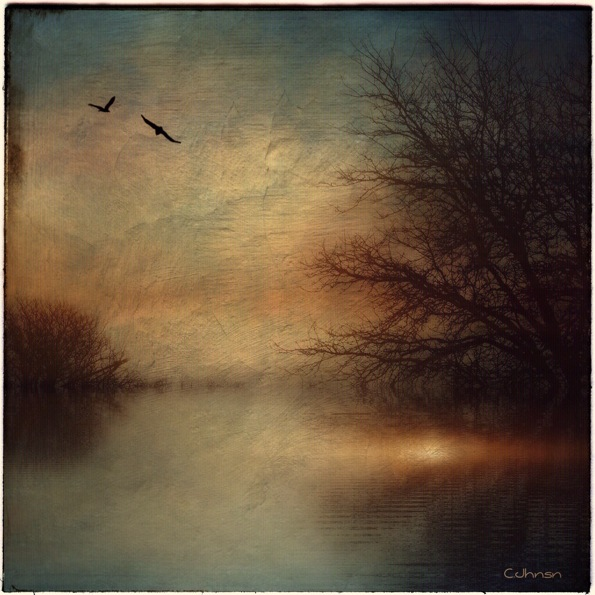Sundown © Cyndy Johnson