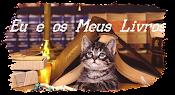Meu Blog de Livros