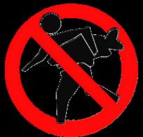NO TO FLY CARP