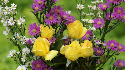 Yellow Roses wallpaper 2 HD